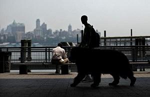 Teen walking dog