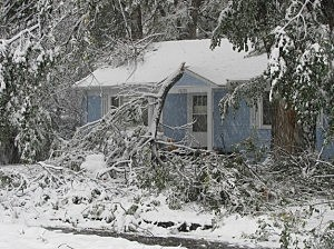 Snow causes tree limbs to break October, 26, 2011