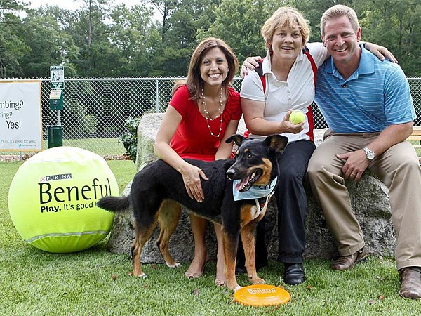 Beneful Dog Food Is Poisoning Killing Dogs According To