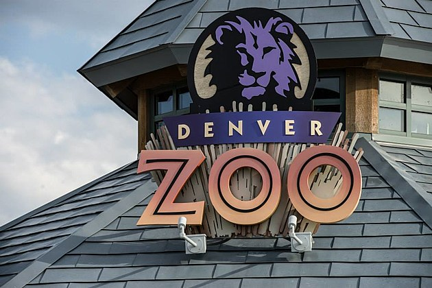 The Denver Zoo Facebook Page